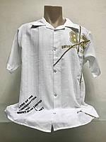 Рубашка Fill Pucci мужская летняя ., фото 1