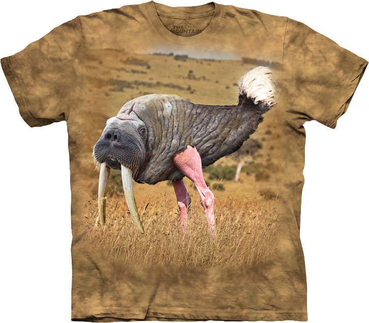 3D футболка The Mountain -  Wallrich