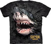 Футболка The Mountain - Shark Week Breakthrough