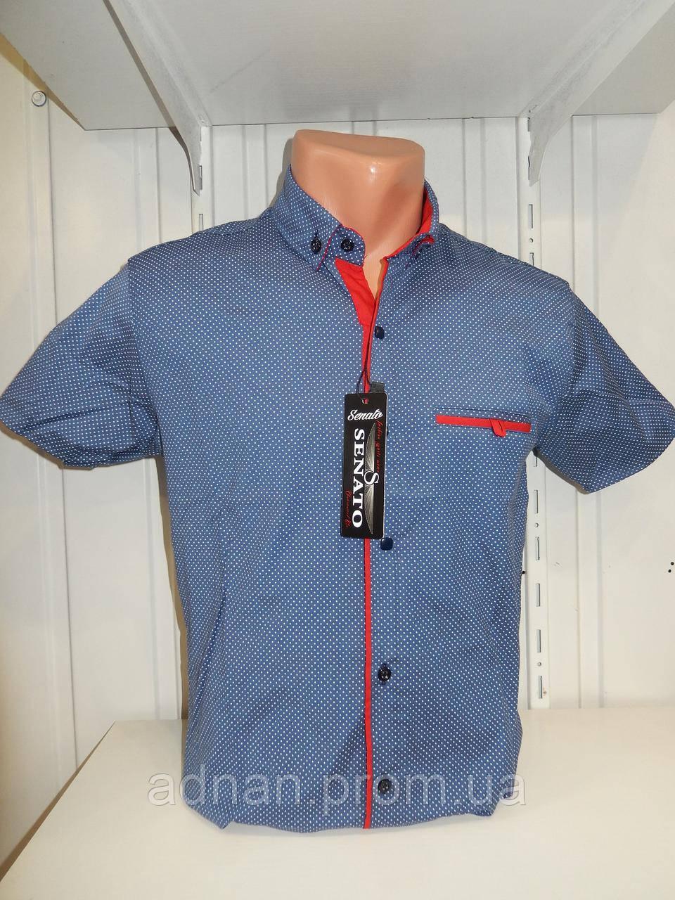 Рубашка мужская SENATO короткий рукав, узор, стрейч котон 18.06 002 \ купить рубашку оптом.