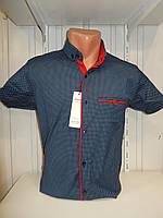 Рубашка мужская SENATO короткий рукав, узор, стрейч котон 18.06 003 \ купить рубашку оптом.