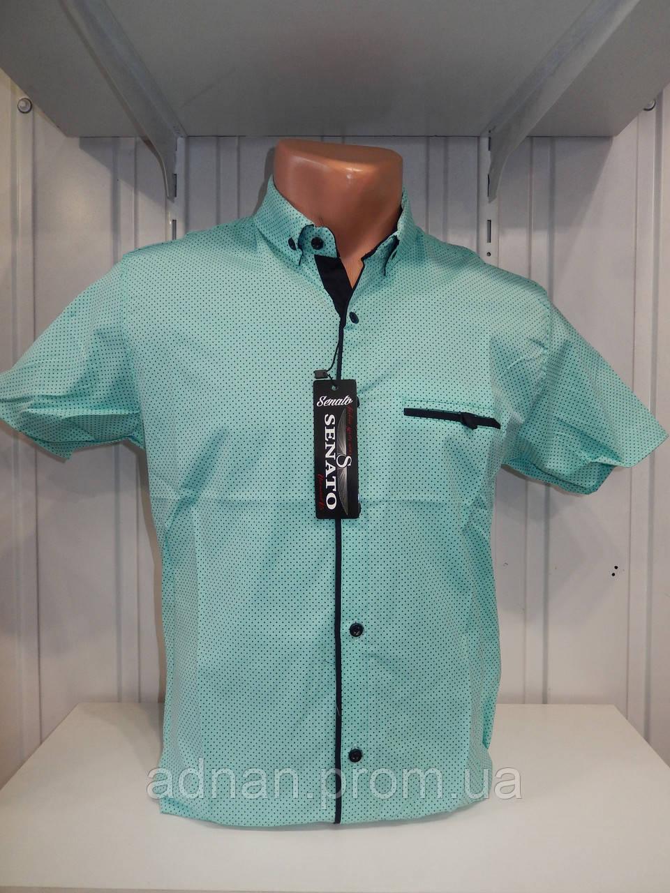 Рубашка мужская SENATO полу-батал, короткий рукав, узор, стрейч котон 18.06 001 \ купить рубашку оптом.