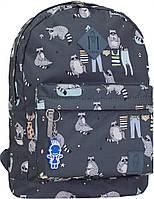 Рюкзак городской молодежный Bagland сублимация еноты 17 л.