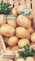 Картофель ВЕЛИНА, семена
