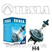Tesla B10402 Лампа галогеновая H4 24V