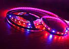 Светодиодная фитолента Foton SMD 5050 (60 LED/m) IP20 Premium, фото 5