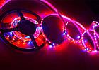 Светодиодная фитолента Foton SMD 5050 (60 LED/m) IP20 Premium, фото 4
