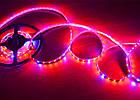 Светодиодная фитолента Foton SMD 5050 (60 LED/m) IP20 Premium, фото 7
