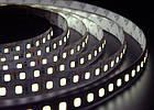 Светодиодная лента Foton SMD 2835 (120 LED/m) IP20 Premium, фото 4