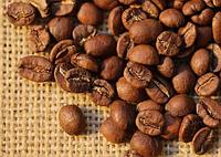 Свежеобжаренный кофе в зернах Бурунди (ОРИГИНАЛ), арабика Gardman (Гардман), фото 1
