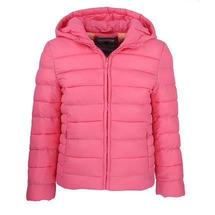 Куртка демисезонная для девочки  GLO-Story , фото 2