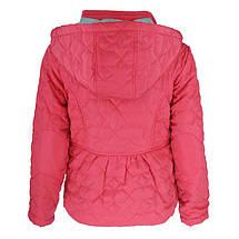 Куртка демисезонная для девочки GLO-Story 6296(92/98), фото 2