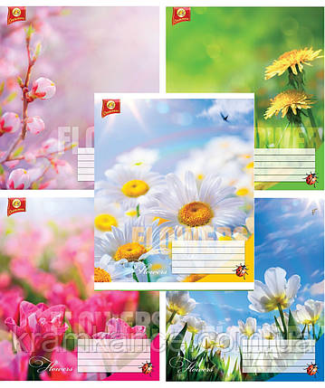 """Тетрадь 18 листов ТЕТРАДА """"Цветы"""" линия, фото 2"""