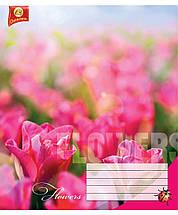 """Тетрадь 18 листов ТЕТРАДА """"Цветы"""" линия, фото 3"""
