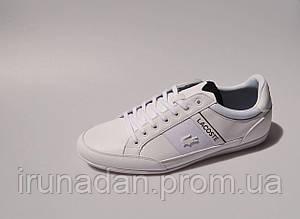 Lacoste оригинал 42 р мужские кроссовки