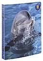 Папка пластиковая на кольцах  Wildlife   105846E, фото 3
