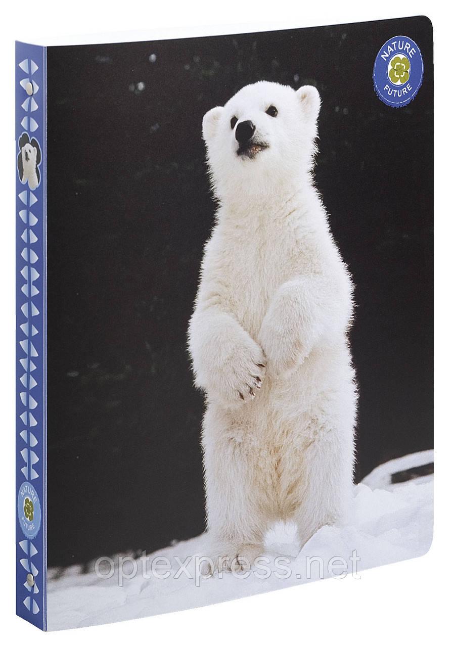 Папка пластиковая на кольцах  Wildlife   105846E