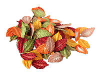 Набор листиков розы — Красно-зеленые оттенки, 27x45 мм, 25 шт