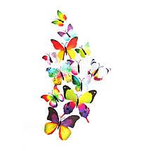 Объемные 3D бабочки на стену (обои) для декора (разноцветные Радуга), фото 2