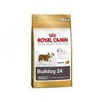 Royal Canin сухой корм для английских бульдогов старше 12 месяцев - 3 кг