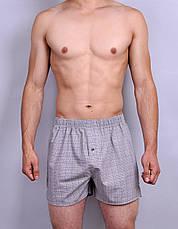 Чоловічі труси з попліна Redo, фото 2