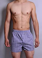 Чоловічі труси з попліна Redo, фото 3