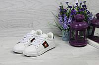 Женские кеды Gucci демисезонные практичные повседневные кеды в стиле гучи белые