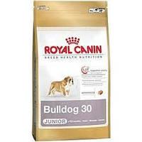 Royal Canin сухой корм для щенков английского бульдога до 12 месяцев - 3 кг