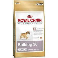 Royal Canin сухой корм для щенков английского бульдога до 12 месяцев - 12 кг