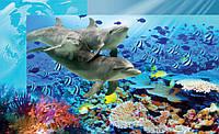 Фотообои подводный мир и дельфины размер 368 х 254 см