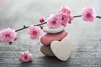 Фотообои 3 D цветы и камешки  размер 368 х 254 см