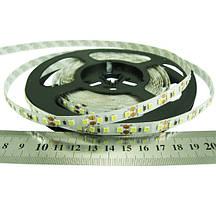 Светодиодная лента RISHANG 2835/120 8.6Вт 12В IP33 8мм Холодный белый >7500К