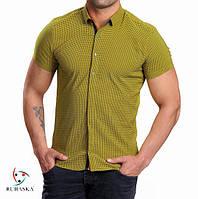 Мужская рубашка на короткий рукав салатового цвета, фото 1
