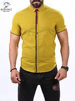 Яркая мужская рубашка на короткий рукав салатового цвета, фото 1