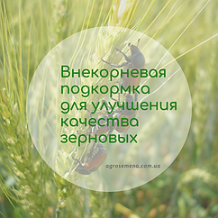 Внекорневая подкормка для улучшения качеств зерновіх