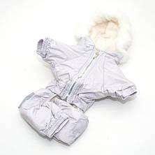 Комбинезон для собак Сильвер бежевый, фото 3