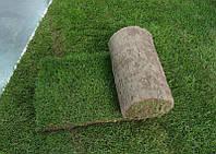 Рулонный газон с укладкой