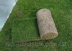 Рулонний газон з укладанням