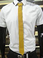 Галстук A 0011 (Желтый)