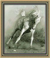 Набор для вышивания Юнона Белый конь