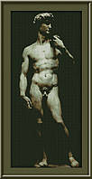 Набор для вышивания Юнона Давид