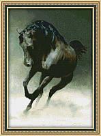 Набор для вышивания Юнона Чёрный конь