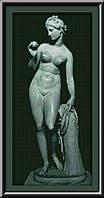 Набор для вышивания Юнона Венера