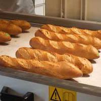 Ленты конвейерные для хлебопекарень