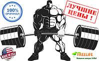 Ginkgo Biloba 120 mg Double Strength (200 veg caps)