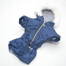 Комбінезон для собак Сільвер синій, фото 3