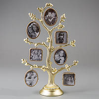 Генеалогическое родовое дерево на 14 фото