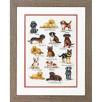Набор для вышивания крестом Собачий сэмплер/Dog Sampler DIMENSIONS 70-35353