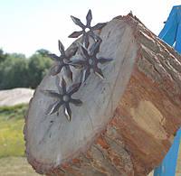 Тир метание сюрикенов, фото 1
