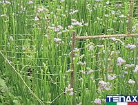 Сетка цветочная белая шпалерная Ортинет 13FH 1,2х1000 м (Tenax - Италия), фото 1